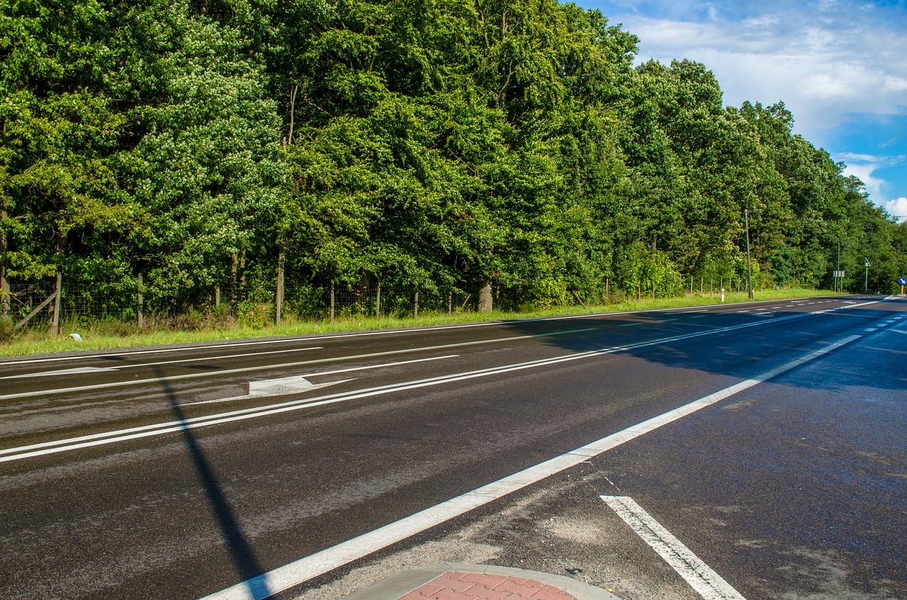 pohled na silnici